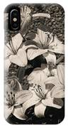 Black And White Orchids IPhone Case