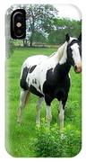 Black And White Paint Horse IPhone Case
