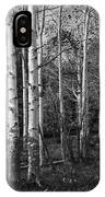 Black And White Photograph Of Birch Trees No. 0126 IPhone Case