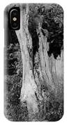 Black And White Tree IPhone Case