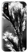 Black And White Vegetation In The Dunes IPhone Case