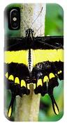 Black And Yellow Swallowtail Butterfly IPhone Case