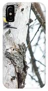 Black-backed Woodpecker IPhone Case