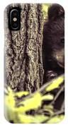 Black Bear Cub IPhone Case