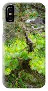 Black Bear Family In A Tree IPhone Case