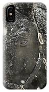 Black Beauty In A Blizzard IPhone Case