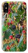 Black Berry IPhone Case