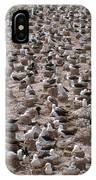 Black-browed Albatross Nesting Colony IPhone Case