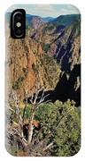 Black Canyon IPhone Case