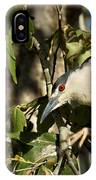Black-crowned Heron Looking For Nesting Material IPhone Case