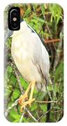 Black Crowned Night Heron IPhone Case