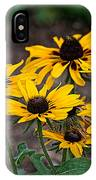 Black Eyed Susans IPhone Case
