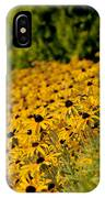 Black Eyed Susans IPhone Case