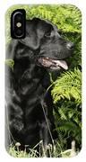 Black Labrador Dog IPhone Case