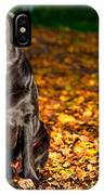 Black Labrador Retriever In Autumn Forest IPhone Case