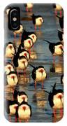 Black Skimmer Beach IPhone Case