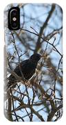 Black  Starling IPhone Case