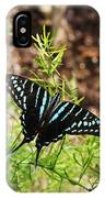 Black Swordtail Butterfly IPhone Case