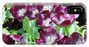 Black Tulips IPhone Case