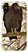 Black Vulture 1 IPhone Case