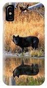 Black Wolf Reflection IPhone Case