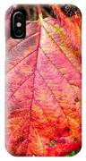 Blackberry Leaf In The Fall 3 IPhone Case