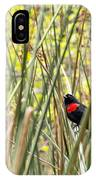 Blackbird In Reeds IPhone Case