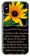 Blackeyed Susan With Bible Quote From 1 Peter IPhone Case