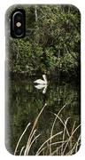 Blackwater River Pelican IPhone Case