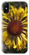 Blanket Flower IPhone X Case
