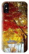 Blaze Of Color IPhone Case