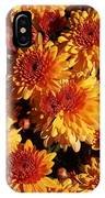 Blaze Of Flowers IPhone X Case