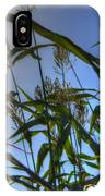 Blazing Rays IPhone Case