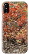 Blended Colors. IPhone Case