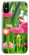 Bloom Pink English Daisies IPhone Case
