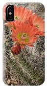 Blooming Cacti IPhone Case
