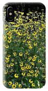 Blooming Rudbeckia Bush IPhone Case