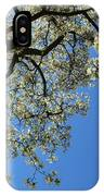 Blossoming White Magnolia Tree Against Blue Sky IPhone Case