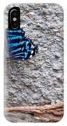 Blue Butterfly Myscelia Ethusa Art Prints IPhone Case