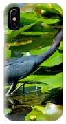 Reddish Egret Among The Lily Pads IPhone Case