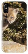 Blue Eyes Baby Fox IPhone Case