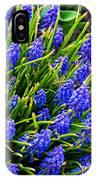 Blue Grape Hyacinth IPhone Case