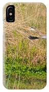 Blue Heron And The Black Bird IPhone Case