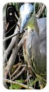 Blue Heron Greeting IPhone Case