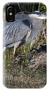 Blue Heron On The Hunt IPhone Case