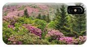 Blue Ridge Mountain Rhododendron - Roan Mountain Bloom Extravaganza IPhone Case