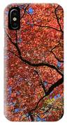 Blue Ridge Mountains Fall Foliage IPhone Case