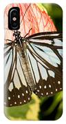 Blue Tiger Butterfly IPhone Case