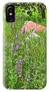 Blue Vervain And Rocks In Pipestone National Monument-minnesota  IPhone Case