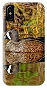 Blue-winged Teal Drake IPhone Case